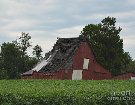 The Old Barn by Dwayne Cain