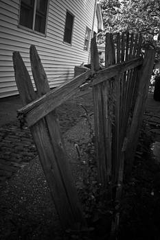 The Old Fence by Matthew Saindon