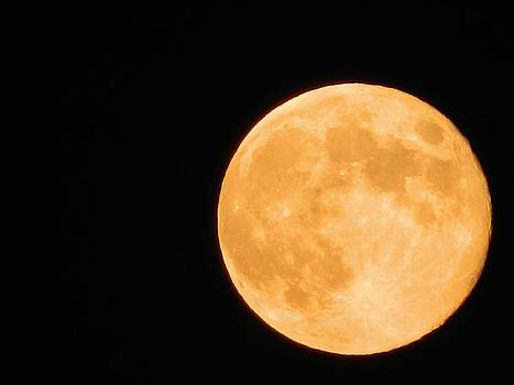 The orange Moon  by Milan Perosavljevic