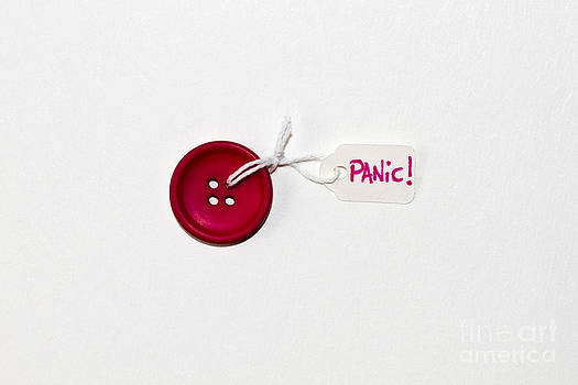 The Panic Button by Catherine MacBride