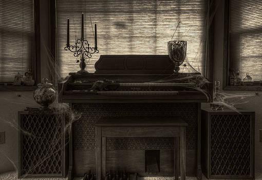 The Phantoms Organ by Brad Granger