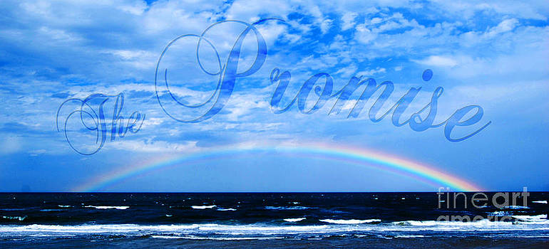 The Promise by Linda Mesibov