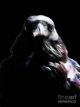 Wingsdomain Art and Photography - The Raven In My Dreams