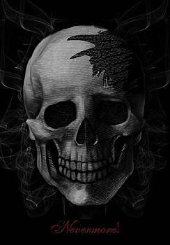 The Raven by Stephanie Haertling