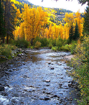 The Rio Grande in Fall by FeVa  Fotos