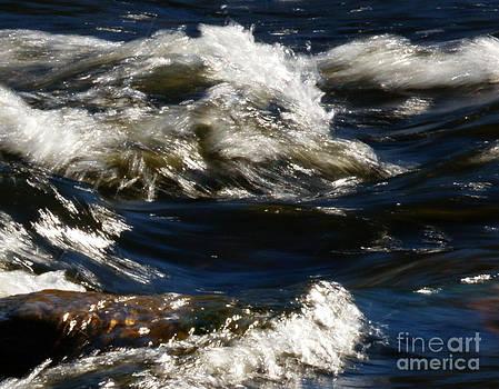 Linda Knorr Shafer - The River Rush