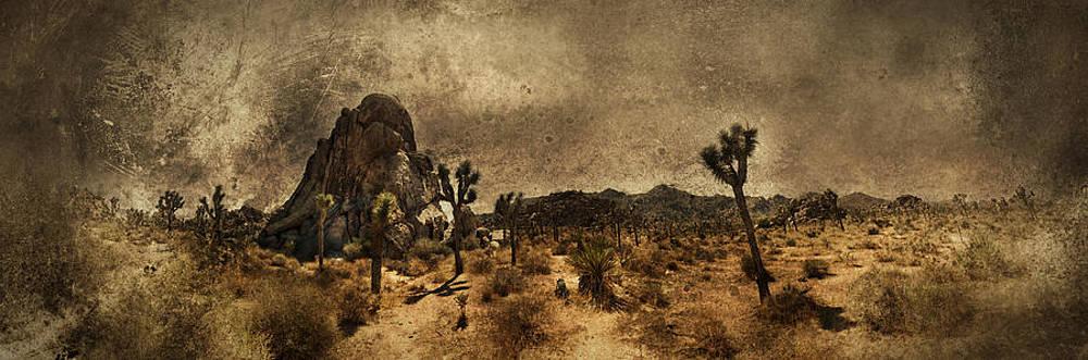 The Rock by Torgeir Ensrud