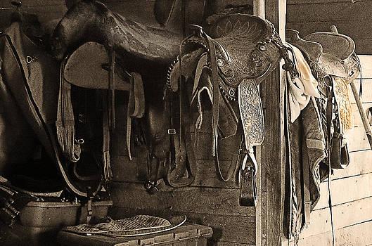 The Saddlery by Cheryl Cencich