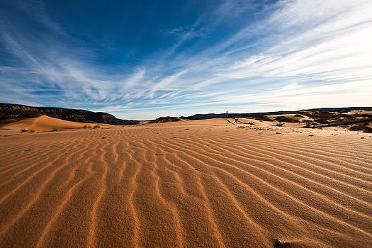 The Sand by Jeremy D Taylor