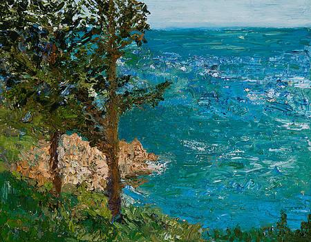 The Shore by Tara Leigh Rose