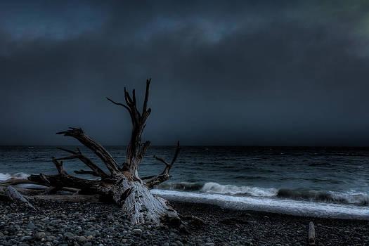 Matt Dobson - The Storm