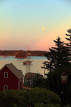 The Swans Island Moon by Doug Mills