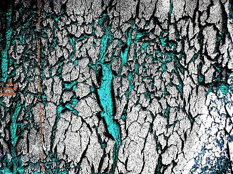 Amy Sorrell - The Teal Scratches