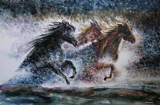 The Thrill Of Wild Horses by NHowell