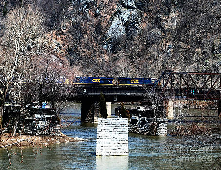The Train and Trestle by Dwayne Cain