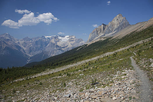 The Unesco Burgess Shale Fields Spread by Taylor S. Kennedy