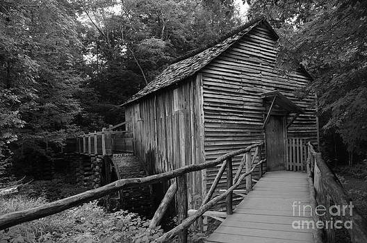 The Water Mill by Gwendolyne Allen