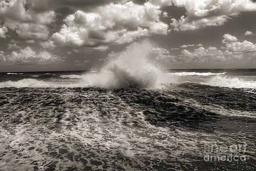 Jeff Breiman - The Wave