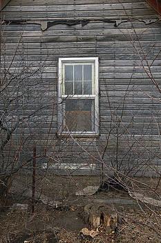 James Steele - The Window
