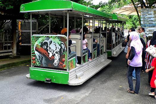 The Zoo Train by Ku Azhar Ku Saud