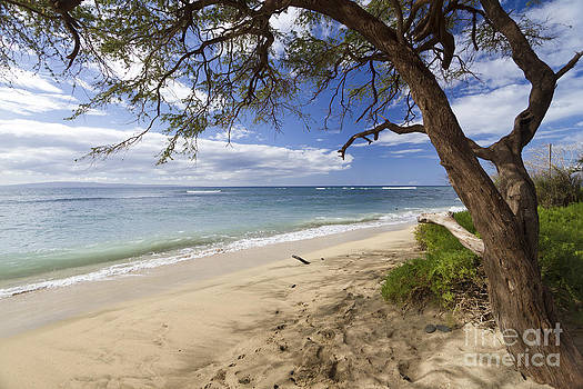 Thousand Peaks Maui Hawaii by Dustin K Ryan