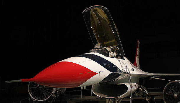 Thunderbird by Carol Fielding