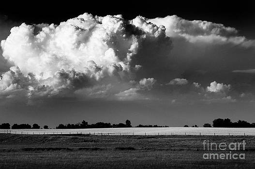 Thunderhead- Essex County Ontario by Mark Clifford