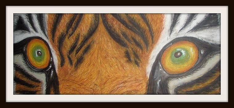 Tiger eyes by Foqia Zafar