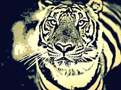 Tiger by Pravin Tripathi