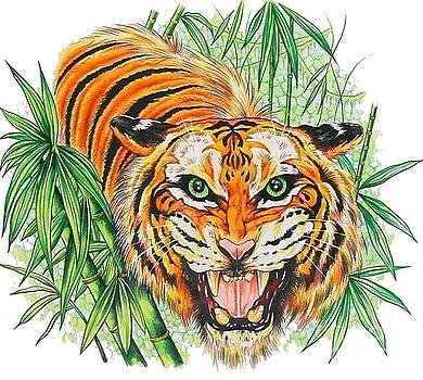 Tiger Roar by Kimberlee  Ketterman Edgar