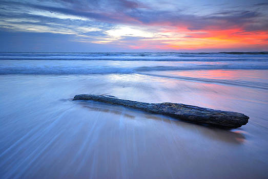 Timber on the beach by Teerapat Pattanasoponpong
