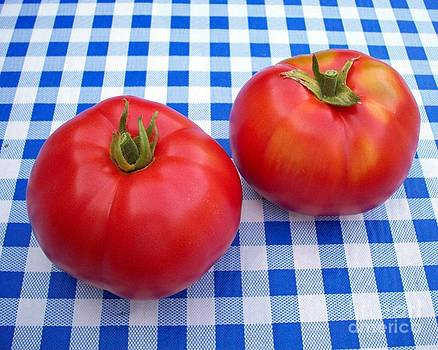 Tomatoes on Blue  by Helen  Campbell