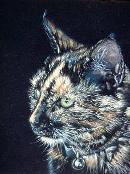 Tortoiseshell Cat by Louise Charles-Saarikoski