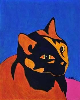 Totise Shell Cat by Ademola Kareem Oshodi