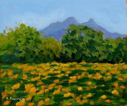 Tournesols au Pic St Loup by Liliane Fournier