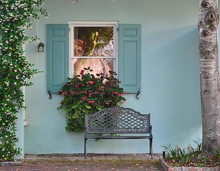 Tradd Street Window Box Tree by Lori Kesten