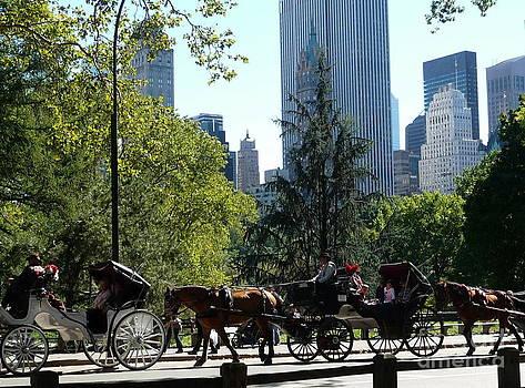 Anna  Duyunova - Traffic in Manhattan