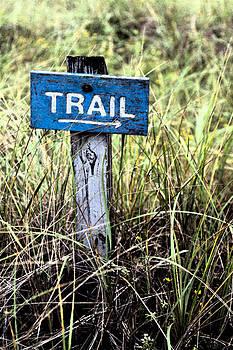 Karol  Livote - Trail That a Way