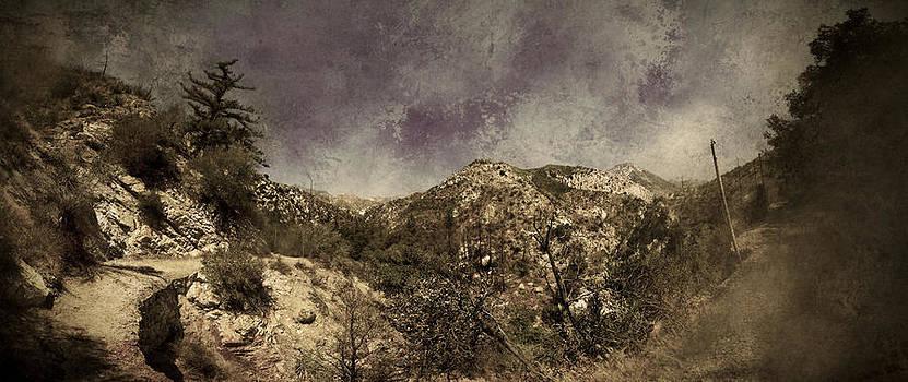 Trails  by Torgeir Ensrud