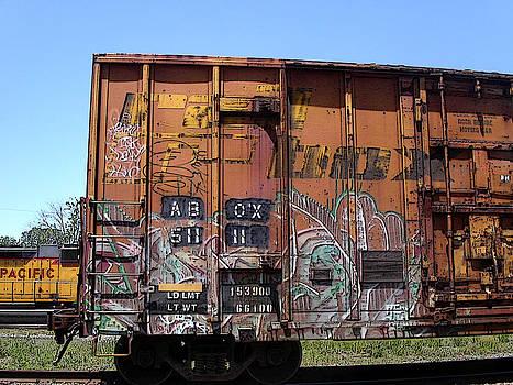Anne Cameron Cutri - Train Car Graffiti 1