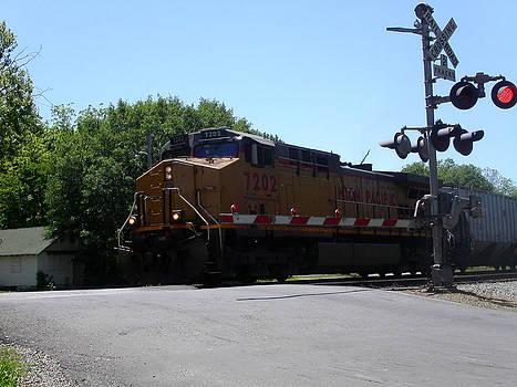 Anne Cameron Cutri - Train Crossing