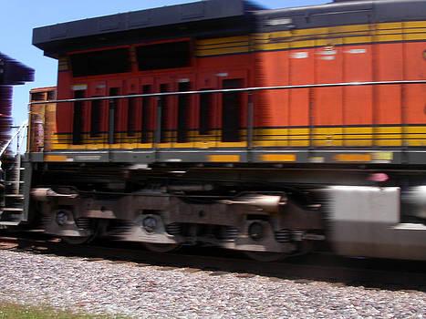 Anne Cameron Cutri - Train in motion