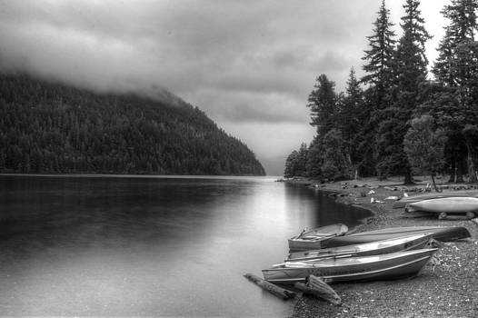 Tranquility in Black and White by Nilanjan Chaks