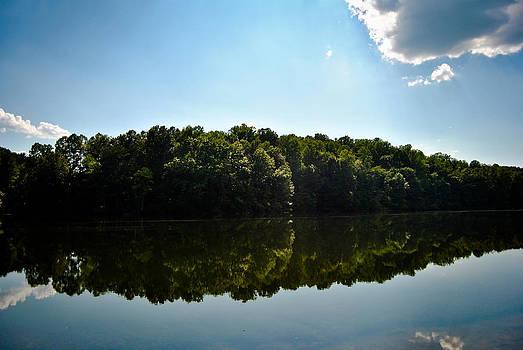 Tree Lined Lake by Swift Family