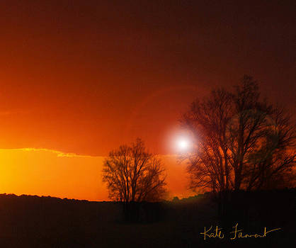 Kate Farrant - Sunset through the trees