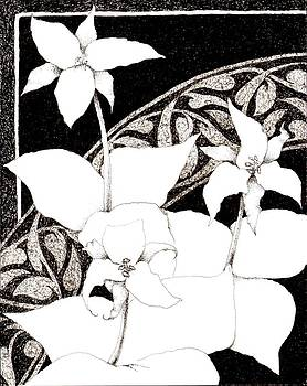 Trillium by Sara Bell