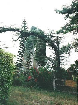 Tropical Fan by Anna Tetro