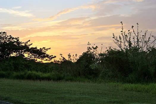 Tropical Sunrise by Felix Zapata