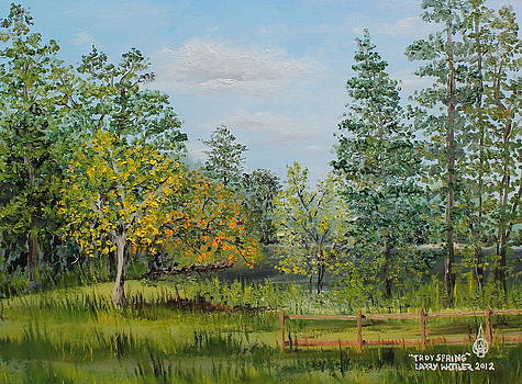 Troy Spring by Larry Whitler