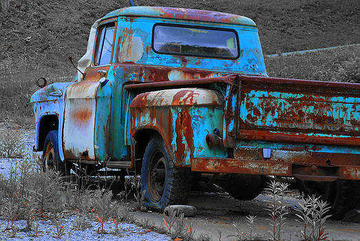 Truck Blues by Cecile Brion